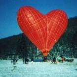 balon v.č. 015