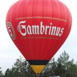 balon v.č. 530