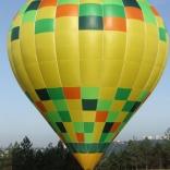 balon v.č. 619