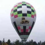 balon v.č. 791