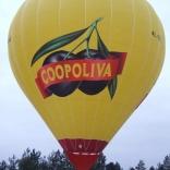 balon v.č. 813