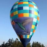 balon v.č. 826