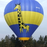 balon v.č. 884