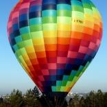 balon v.č. 891