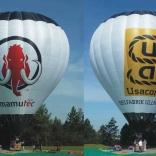 balon v.č. 916