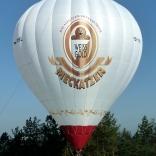balon v.č. 931
