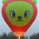 balon v.č. 1123