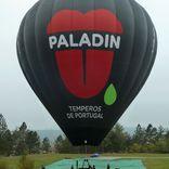 balon v.č. 1194