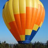 balon v.č. 1237