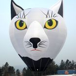 balon v.č. 1291