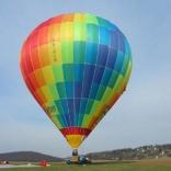 balon v.č. 231