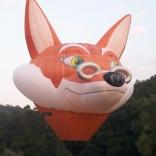 balon v.č. 207