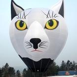balon v.č. x1291