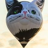 balon v.č. x1476
